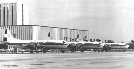 Electras en Miami: Los tres Lockheed L-188 Electra C adquiridos por LAP en el Aeropuerto Internacional de Miami en Diciembre de 1968. Foto copyright: Archivo de Roger Bentley.