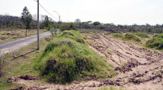rida-y-deforestada-quedo-la-zona-en-donde-habian-iniciado-las-obras-en-el-parque-guasu-_970_539_1530795