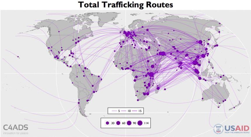 Routes-GIF-740x431@2x